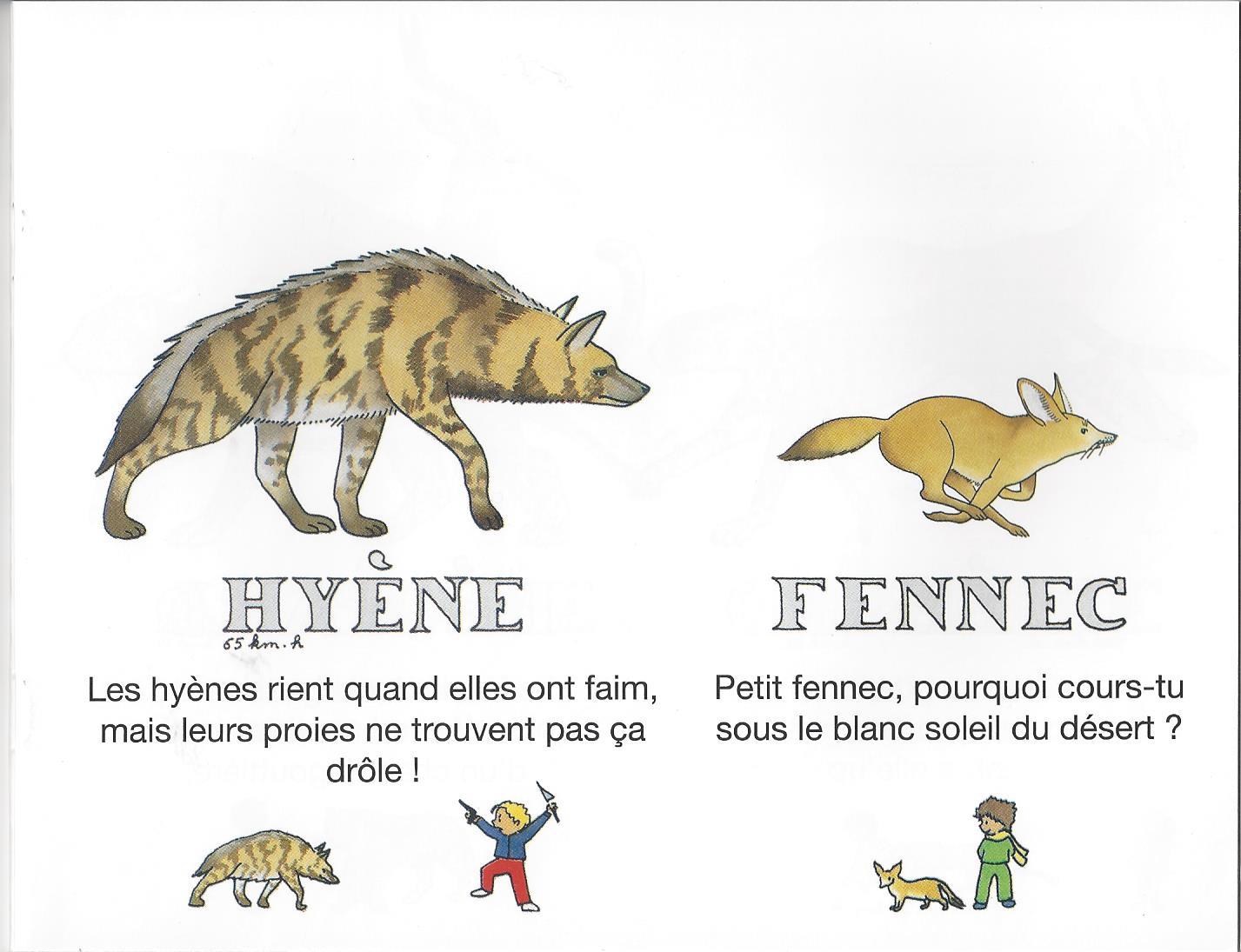Les animaux d afrique lire c 39 est partir - Animaux afrique maternelle ...
